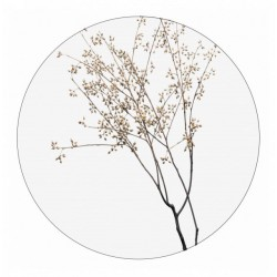 Muurcirkel dry plants 30 cm
