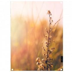 Tuinposter nature 61x81cm