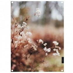 Tuinposter dry flower 61x81cm