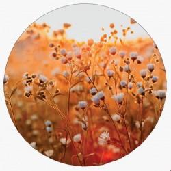 Muurcirkel lovely flower 40cm
